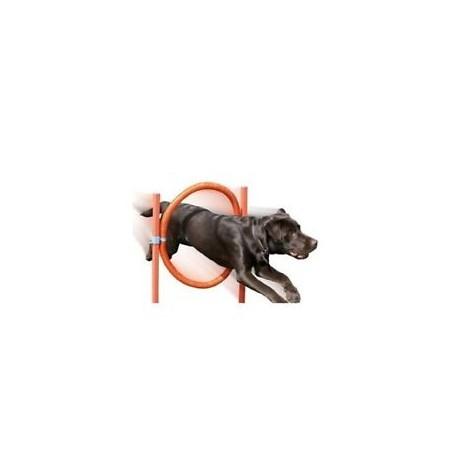 Gioco Agility Dog Anello