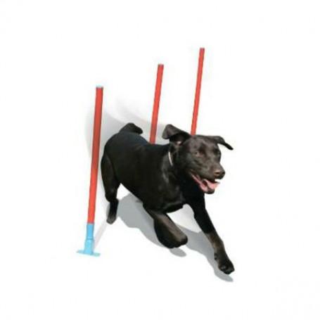 Gioco Agility Dog Slalom