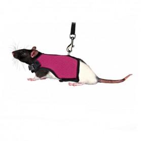 Parure Pettorina Con Guinzaglio Per Ratti