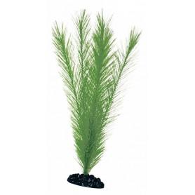 Plant Classic Blyxa Lg