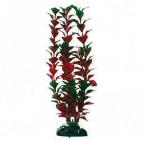 Plant Classic Ludwigia Lg