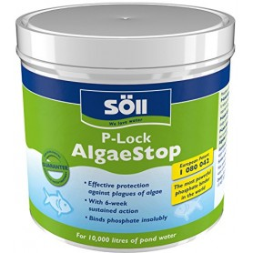 Soil AlgaeStop P-Lock 250g