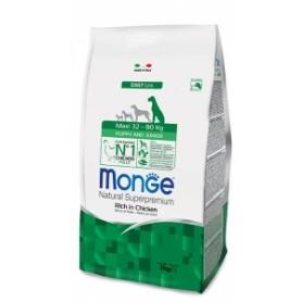 Raccordo Pvc Manicotto Incollaggio + Filettatura Maschio diametro 20-16 x 1/2 pollice