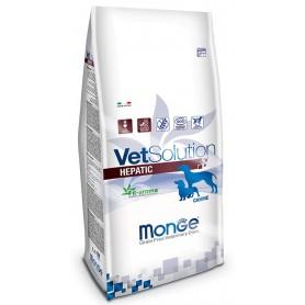 Monge Vetsolution Hepatic Canine 12Kg