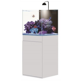 AQPet Aqua 50 Kit Acquario Marino Kubic Reef 150 Litri Extra Chiaro Con Sump