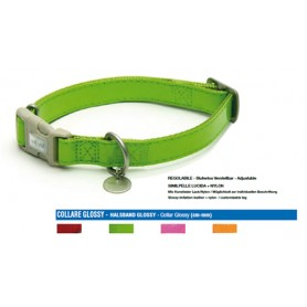 Collare Mylord Similpelle Lucido 20-30Cm Verde