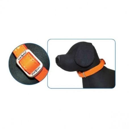 Collare Mylord Similpelle Lucido 35-50Cm Arancio
