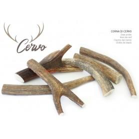 Corna di Cervo Misura L 90-110Gr